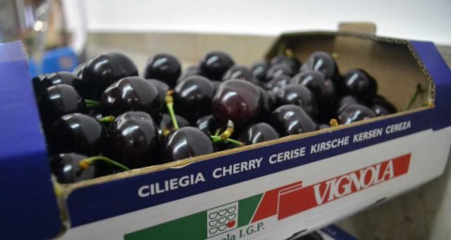 Ciliegia-del-Vignola-Igp