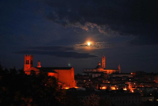 Calici-di-Stelle-2013-Siena