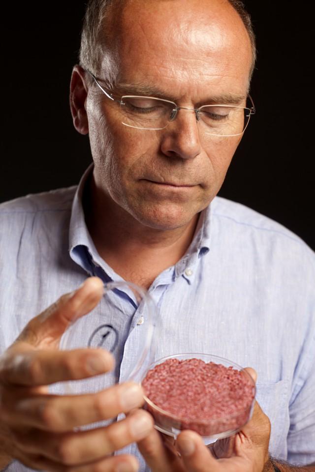 hamburger di carne artificiale preparazione 03
