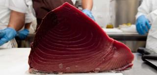Pane surgelato, plancton, olio di nocciola, tonno rosso: così cambiano i ristoranti nel 2017