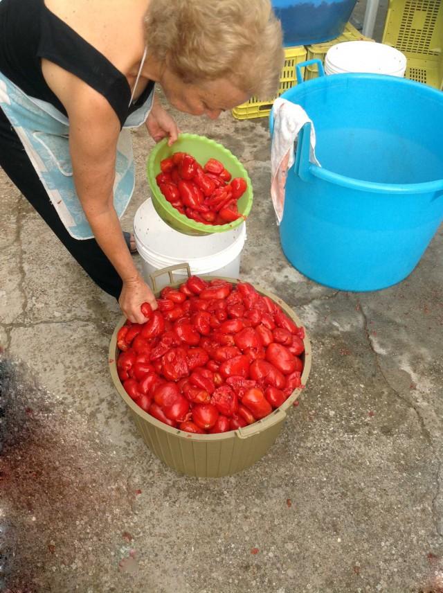 pomodori schiacciati per la conserva