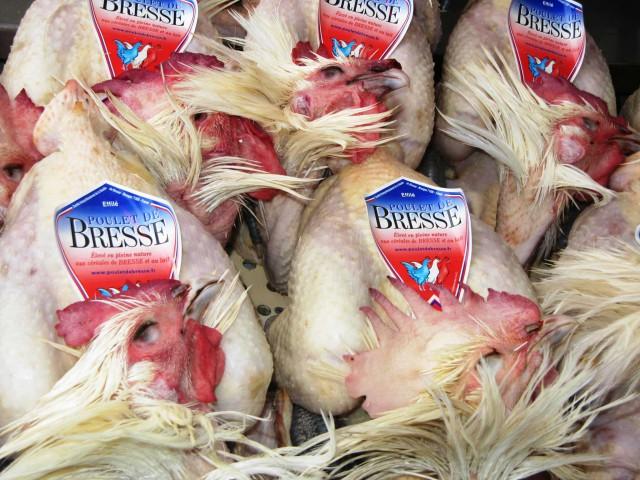 poulet-de-bresse-marchio