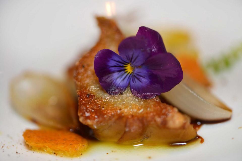 Caracol marinhoe casca de limão rosa