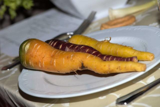 carote gialle