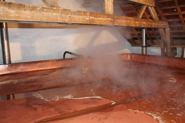 fermentazione spontanea vasca