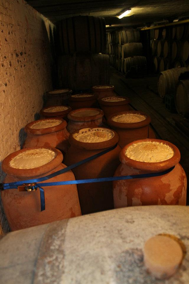 fermentazione spontanea