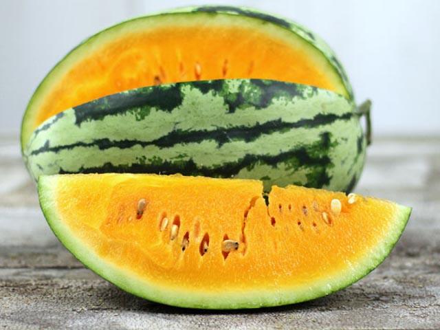 Orangeglo cocomero