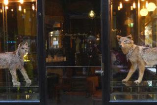 Parigi. Quanto spenderete al Caffè Stern degli Alajmo che apre oggi