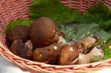 La ricetta perfetta dello chef: lombrichelli con funghi porcini e cozze