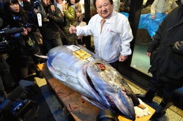 tonno Giappone costoso 2015