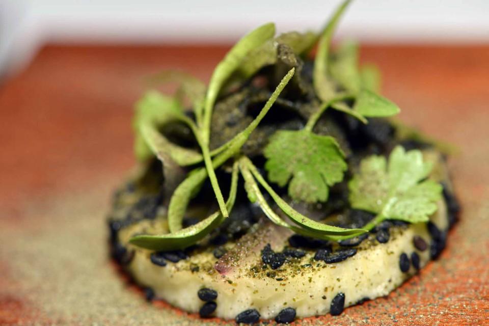 Ceviche de berinjela e algas