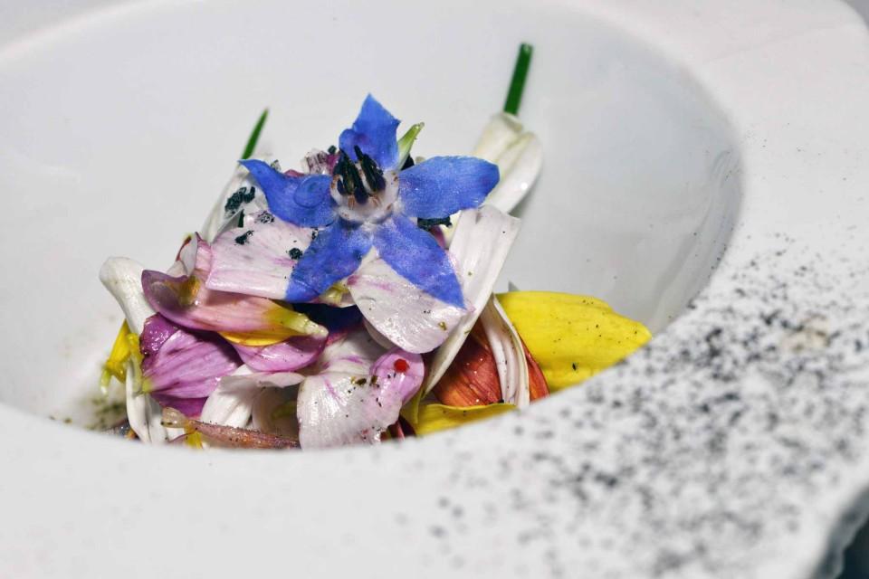 Ceviche di fiori