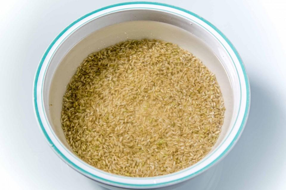 ricette riso germinato 03