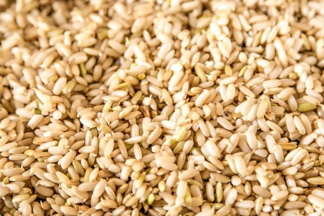 ricette riso germinato 09