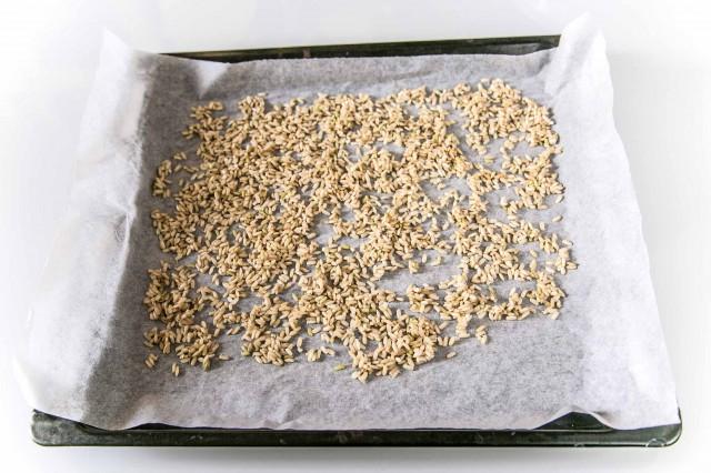 ricette riso germinato 12