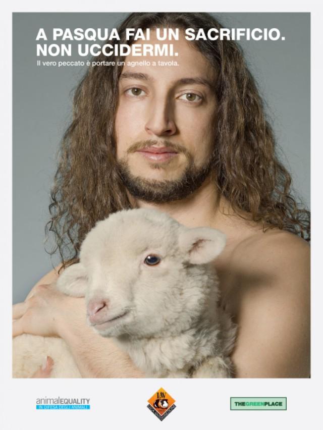 campagna agnello pasqua