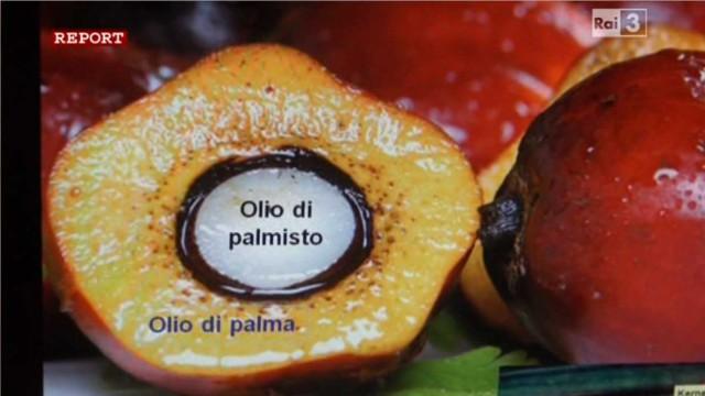 olio di palmisto