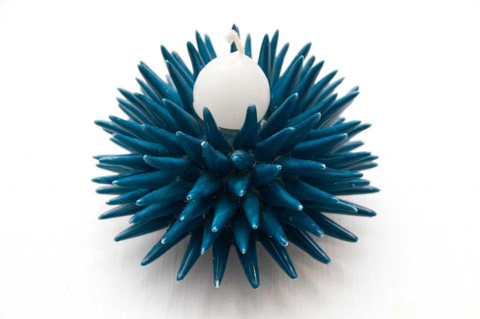 riccio blu