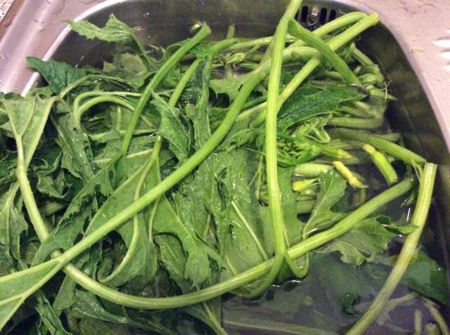 ricetta zucchine talli sottolio 2