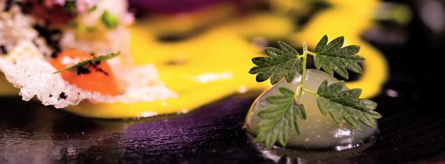 ricetta merluzzo marco martini