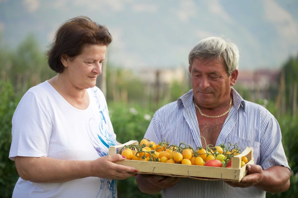 Zio Giovanni pomodori