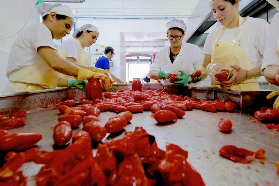 pomodori San Marzano donne