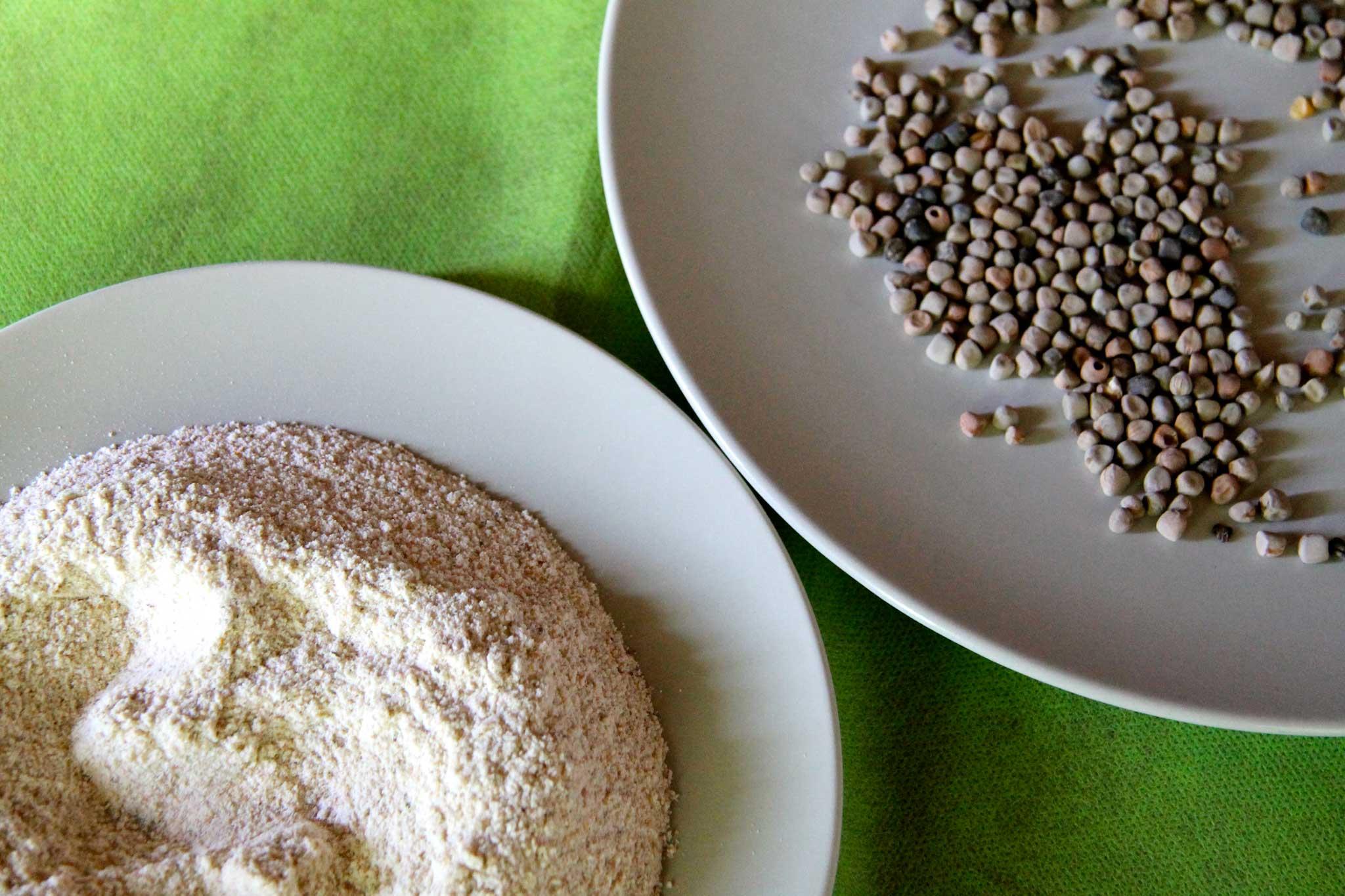 maracuoccio legume farina