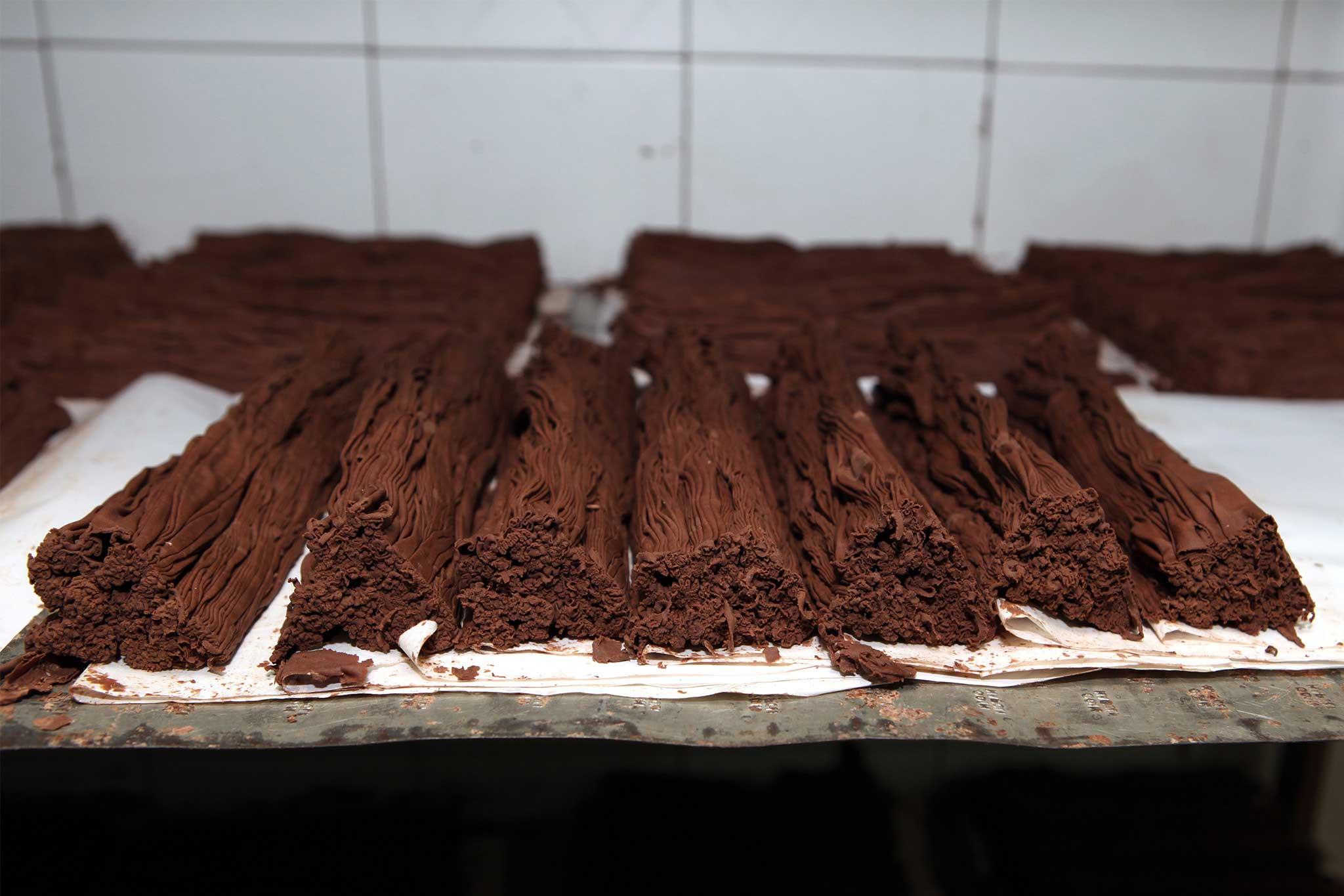cioccolato foresta