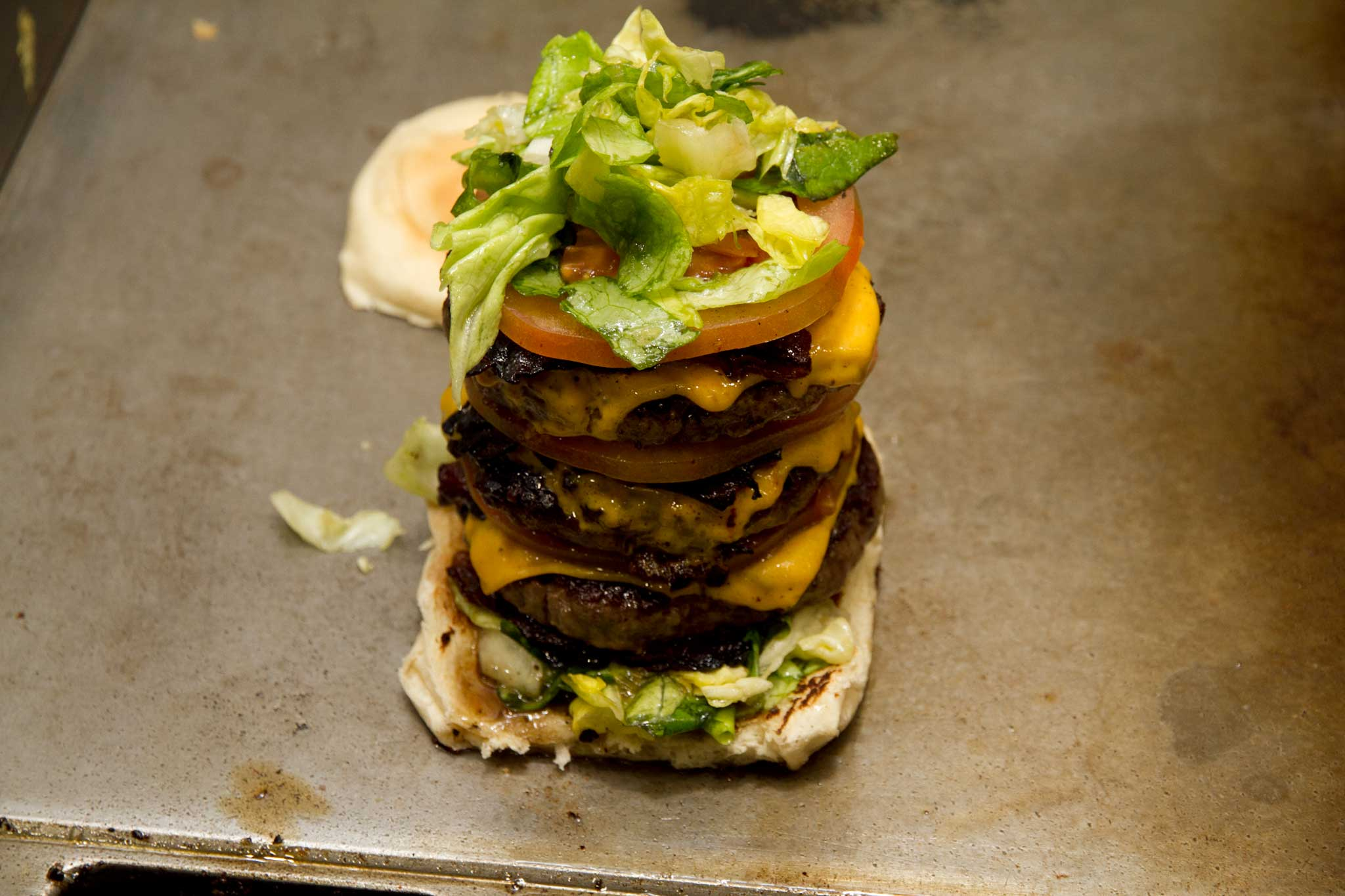 hamburger Tortora