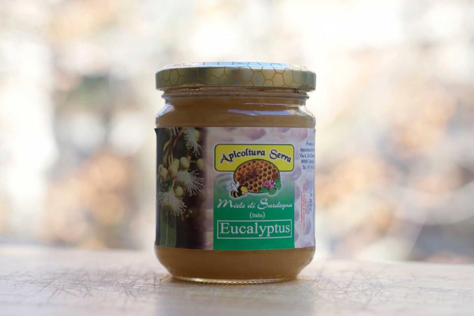 miele di eucalipto Serra
