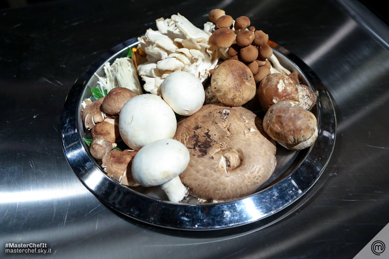funghi MasterChef 5