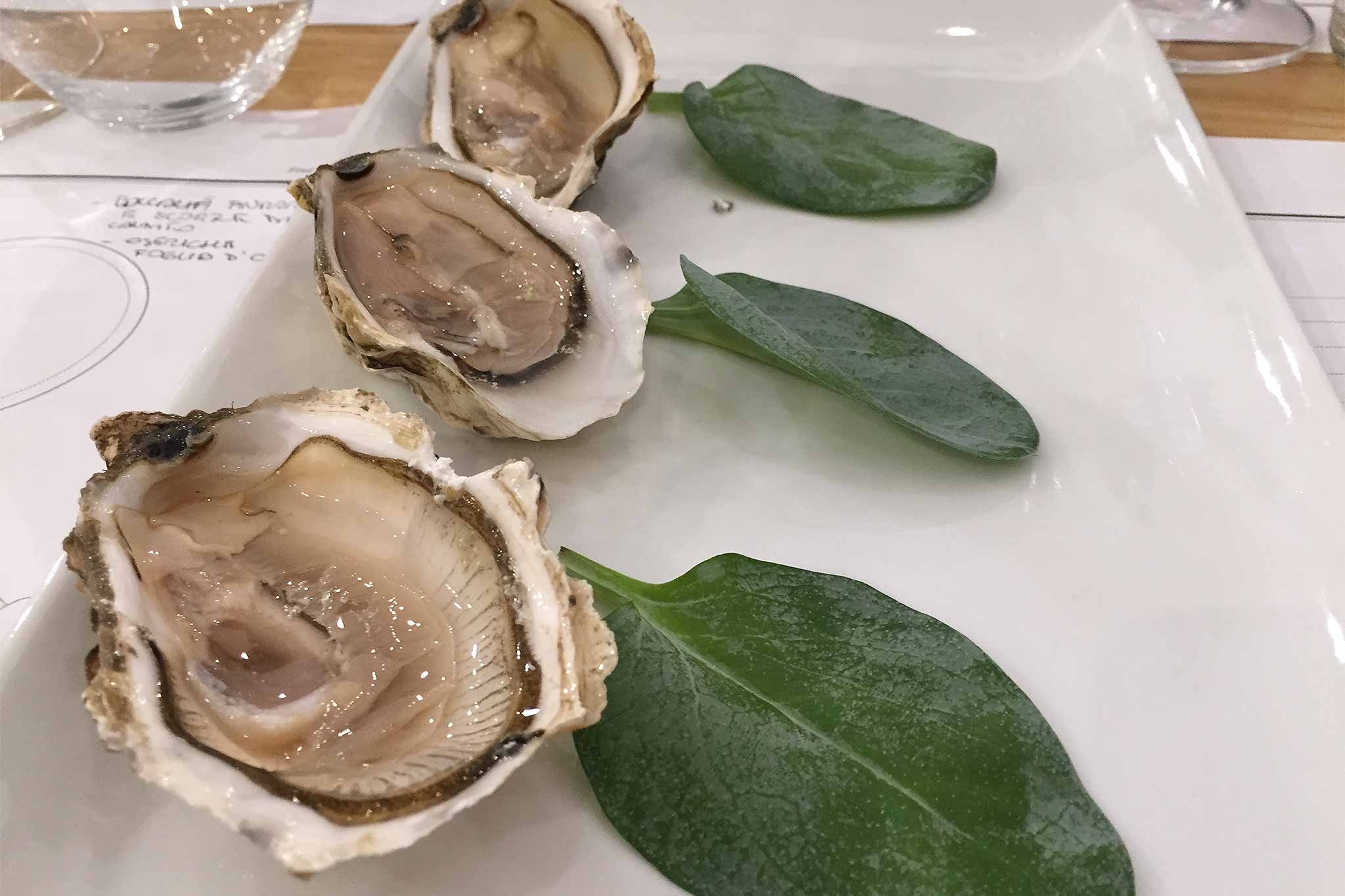 iodio-oyster