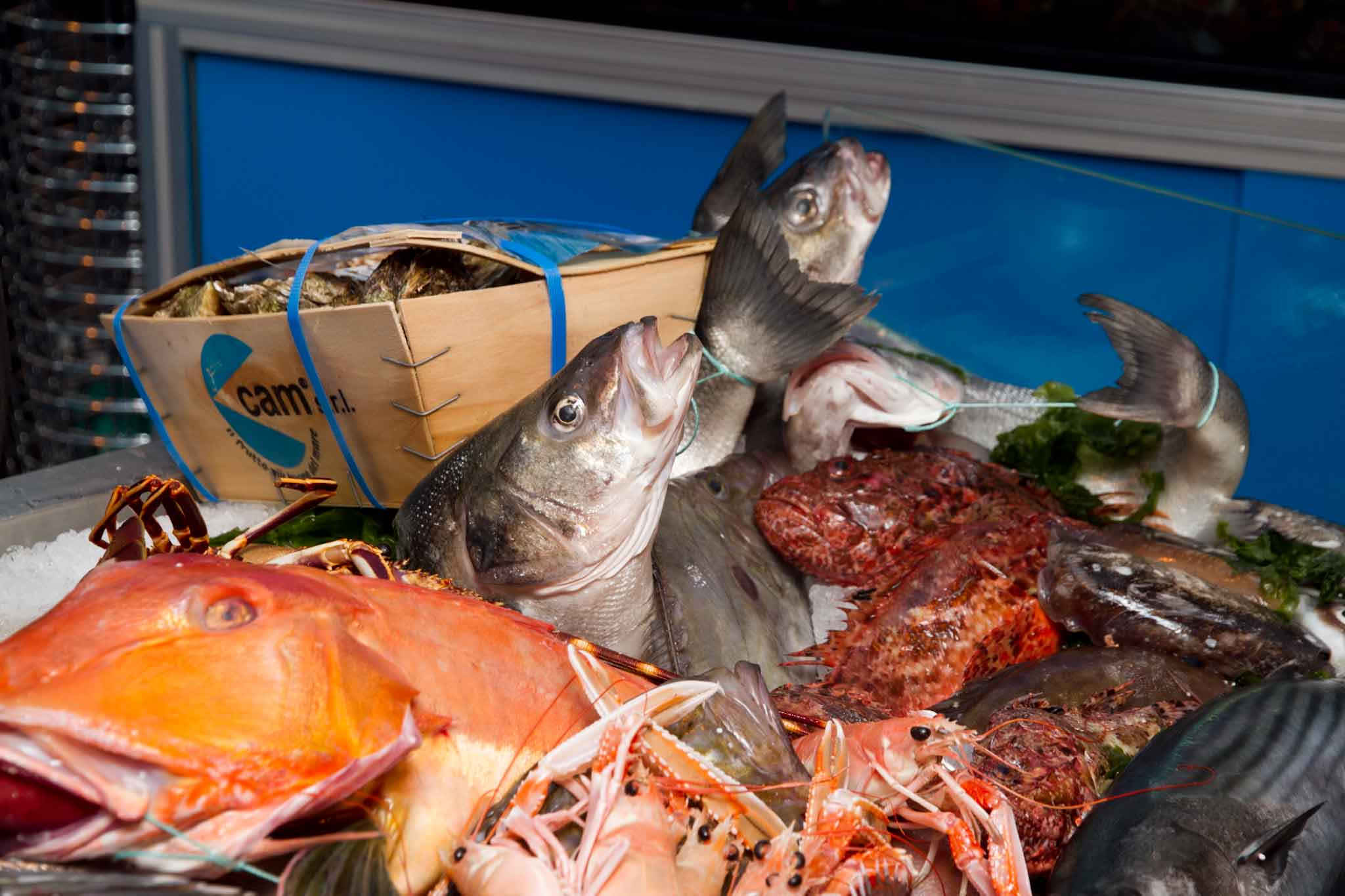 banco del pesce