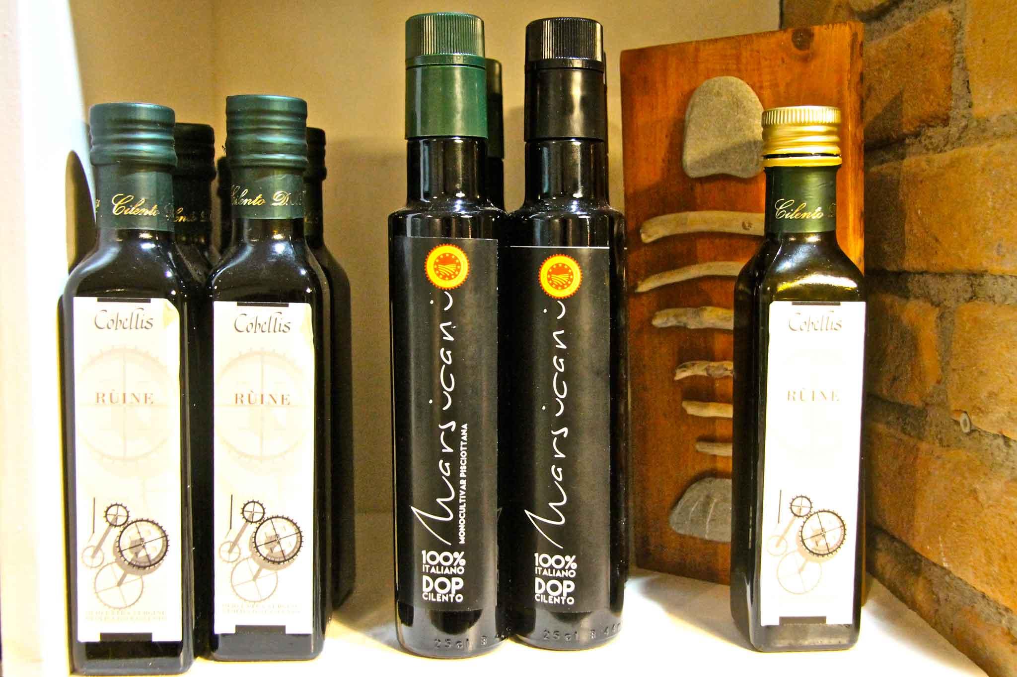 olio oliva Cilento