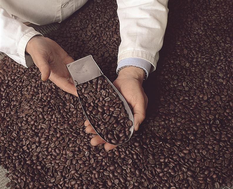 caffè piansa firenze