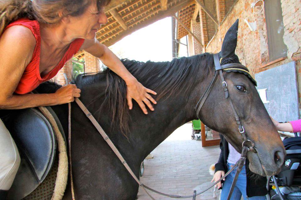 milano cascina santa brera cavallo
