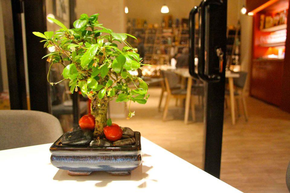 mele rosse bonsai maniera carlo milano