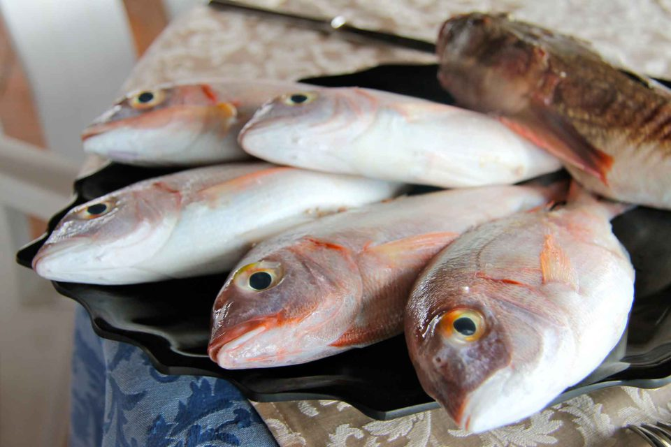 procida pesce fresco luveri