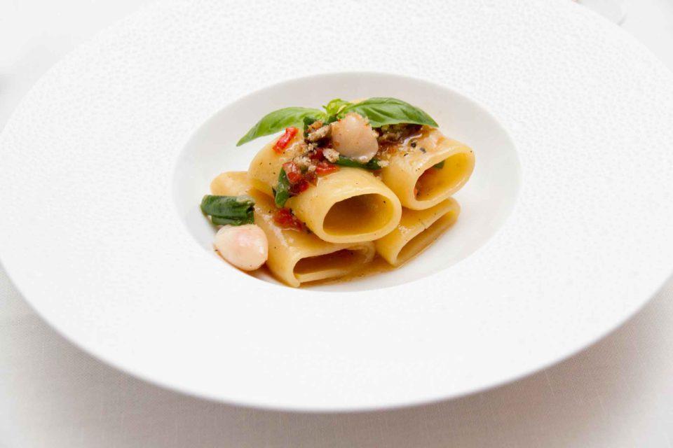 paccheri aglio olio calamaretti