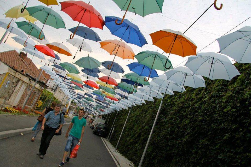 romania paesaggio ombrelli