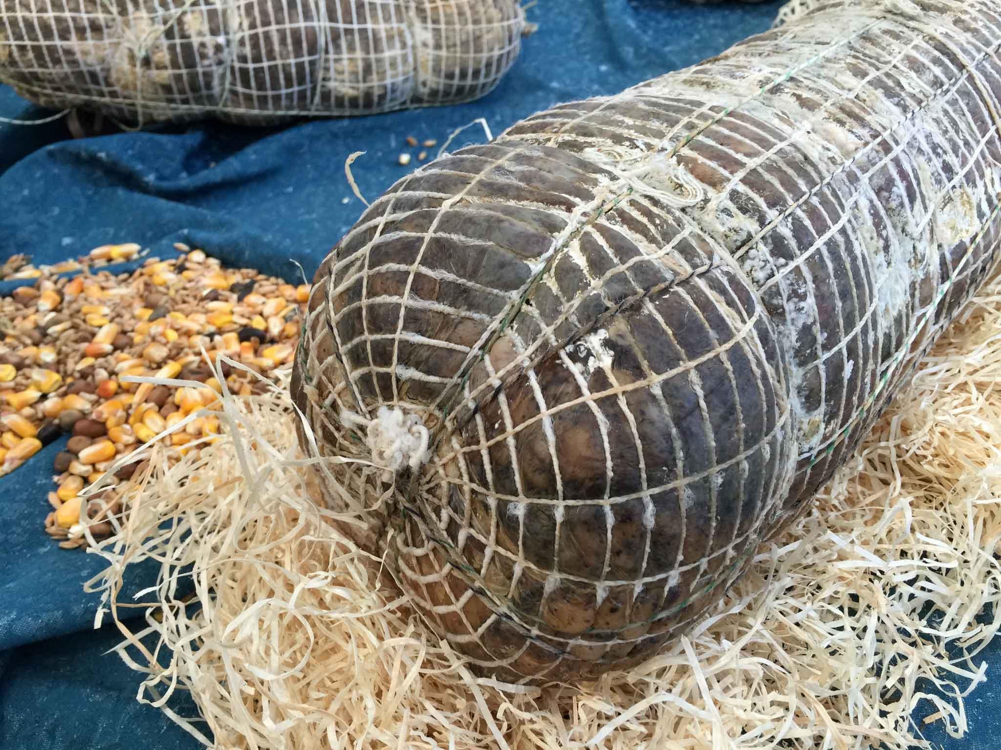 la-contrada-del-nero-arpino