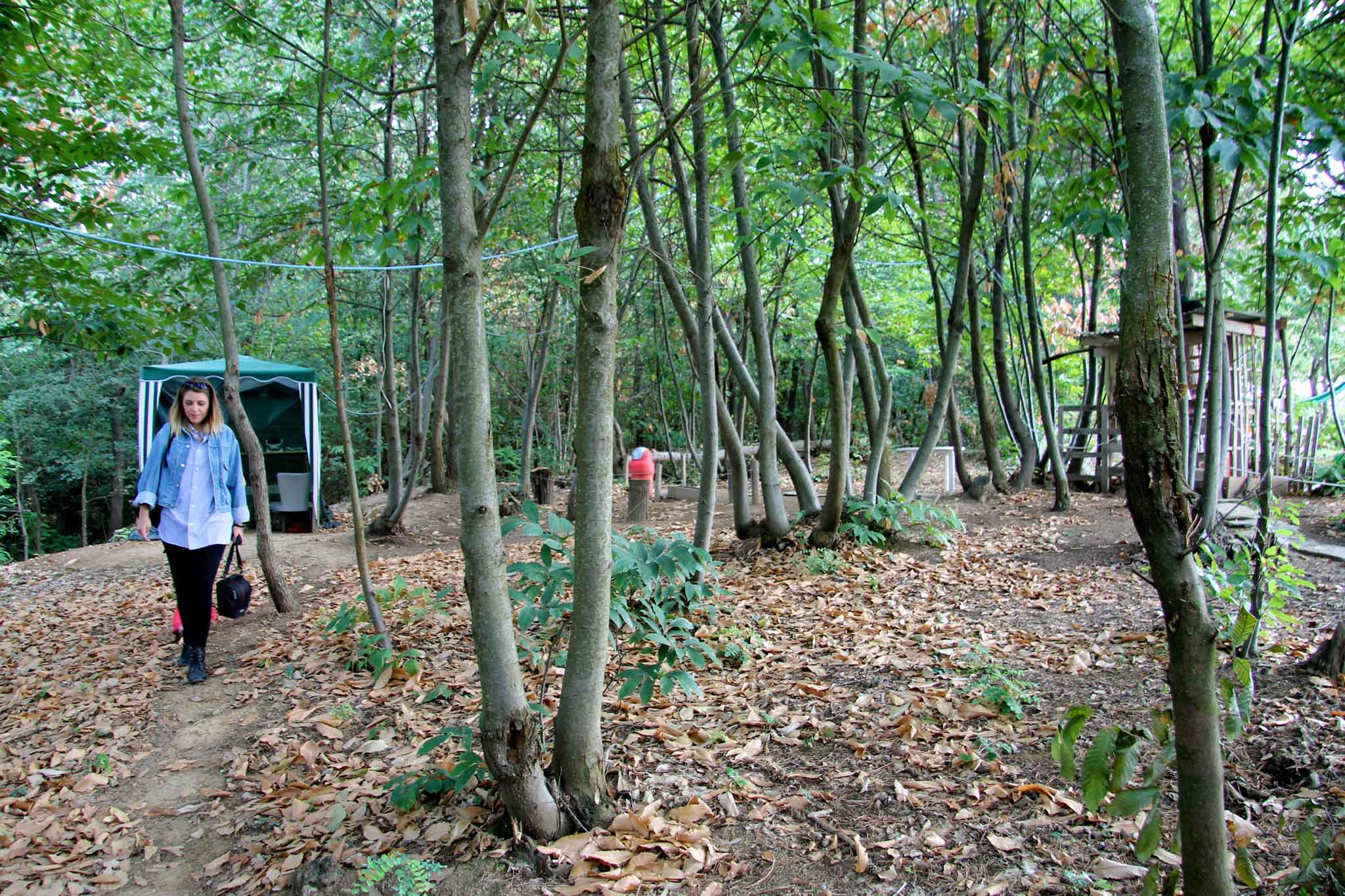 agriturismo-sottobosco-langhe-parco