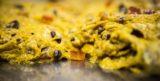 Ricetta. Come fare il panettone al cioccolato e arancio con la farina integrale