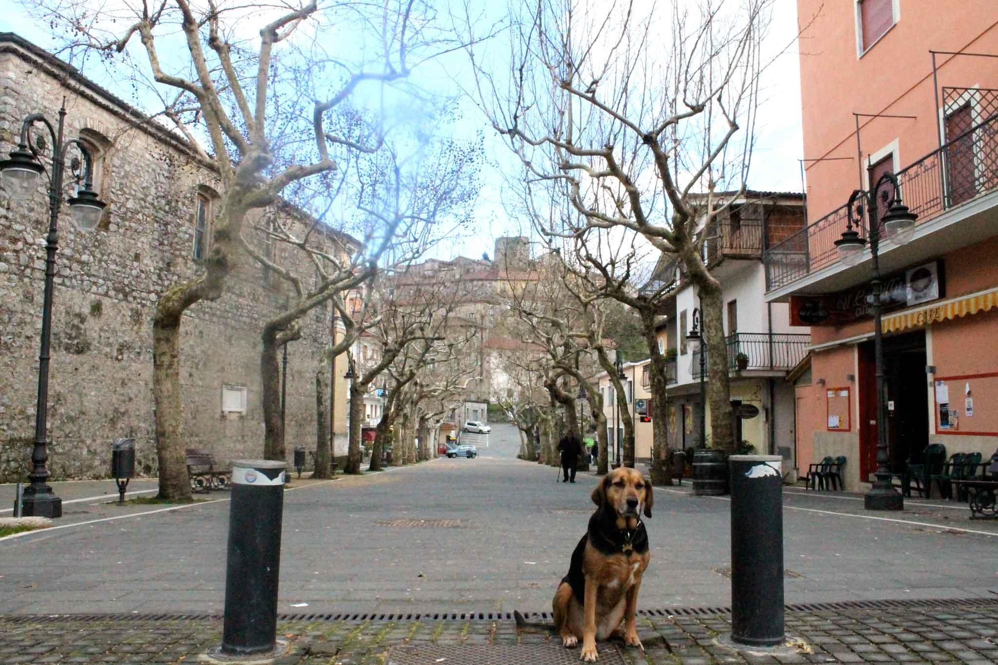 piazza-caselle-in-pittari