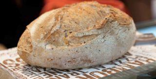 I consigli e la ricetta di Renato Bosco per uno strepitoso pane ai cereali con lievito madre