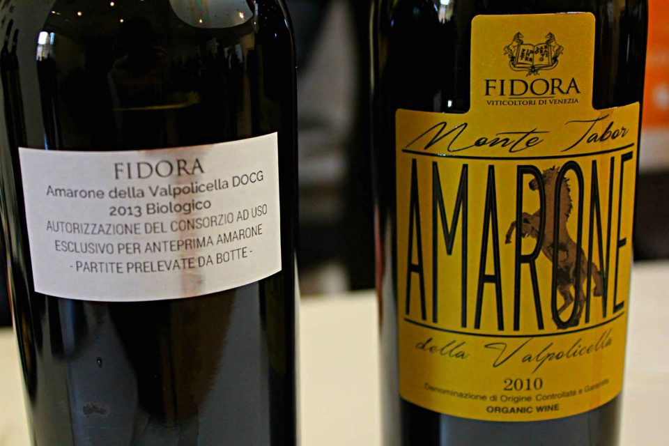 Amarone 2013-Fidora
