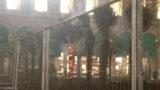 Milano. Le palme di Starbucks al Duomo non piacciono e ignoti le incendiano