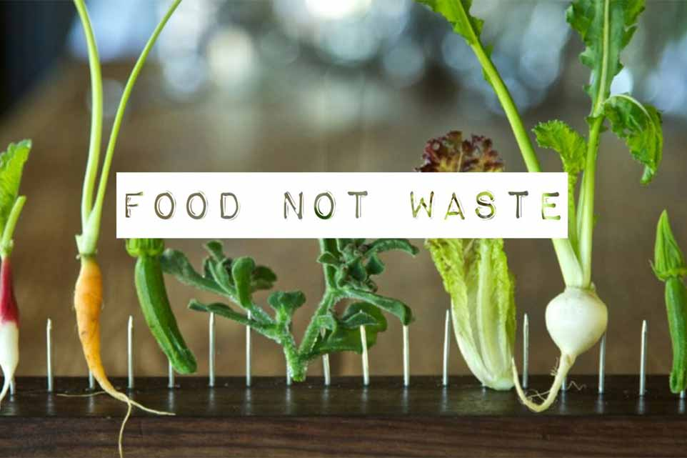 wasted-food-nont-waste