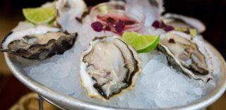 Che ne sai tu dell'ostrica italiana La Perla del Delta che è una vera regina?