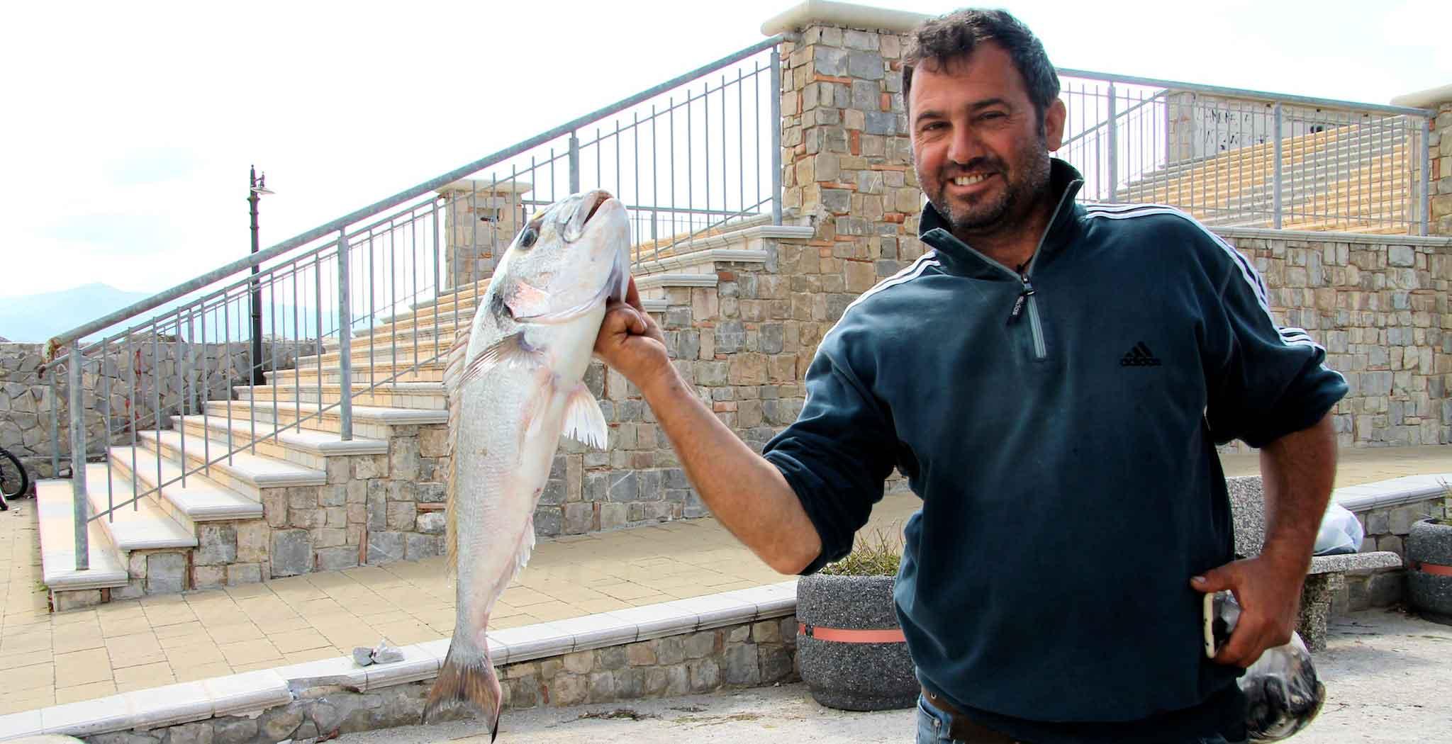 Cilento da chi comprare il pesce fresco ogni giorno a for Comprare pesci